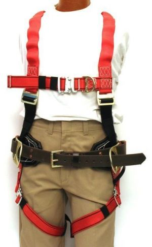 86LE ALP Flex Combo fall protection equipment